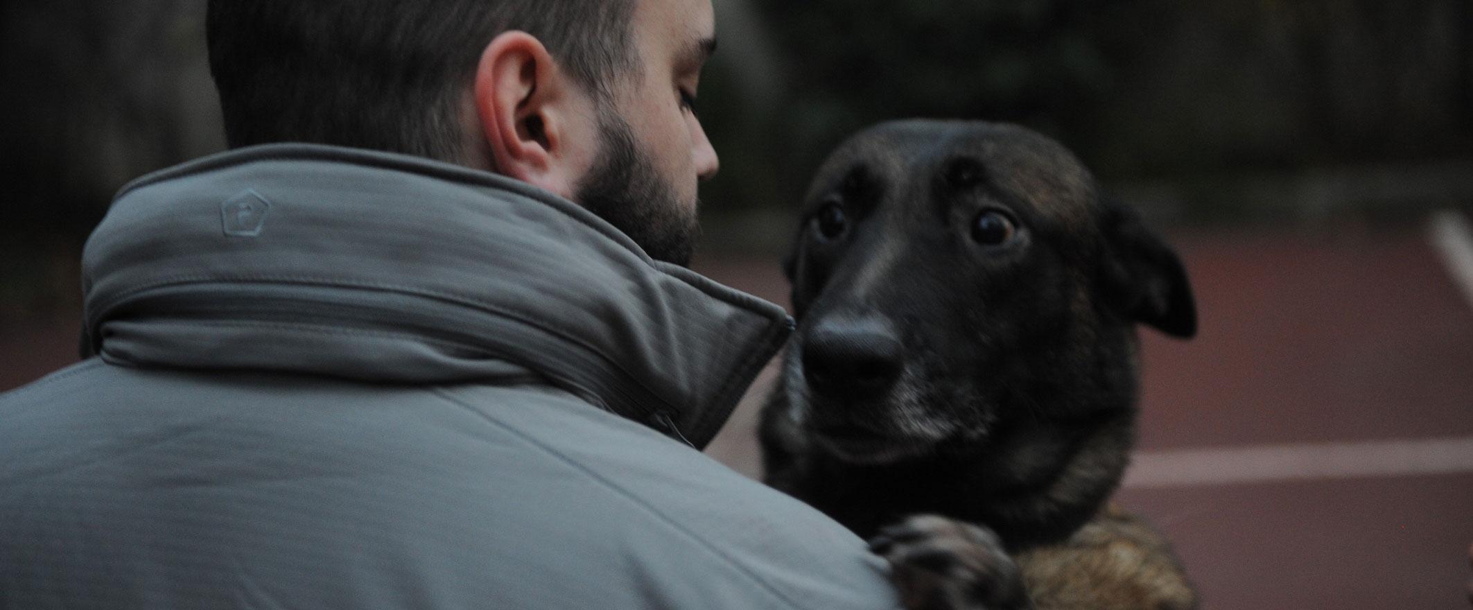 chien sécurité paris malinois paris gardiennage